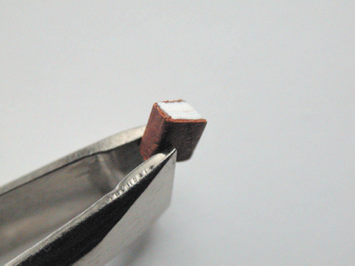 Smallestbook_tweezers